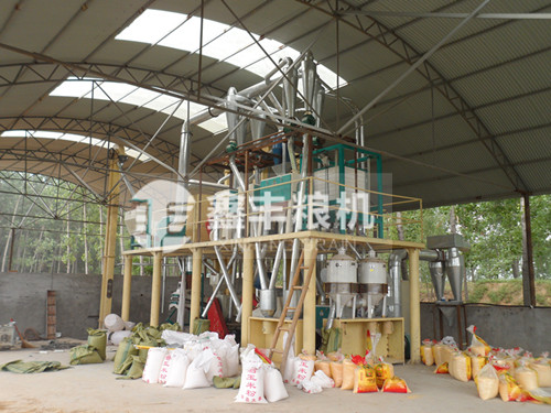 20吨级玉米加工设备