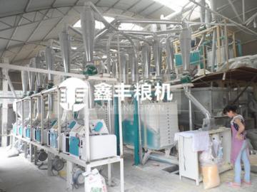 河南滑县老庙200吨玉米面加工设备安装案例