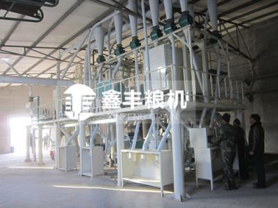 河北50吨玉米加工设备安装案例